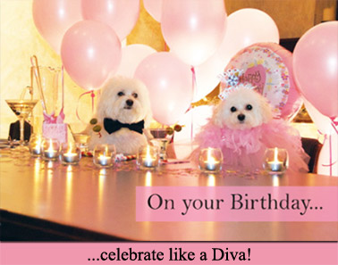 On your Birthday ... celebrate like a Diva!