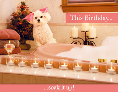 This Birthday ... soak it up!