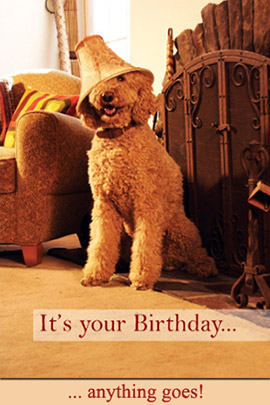 It's your Birthday ... anything goes!